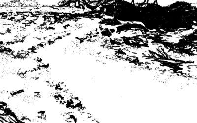 Journal de l'atelier public de paysage n°9