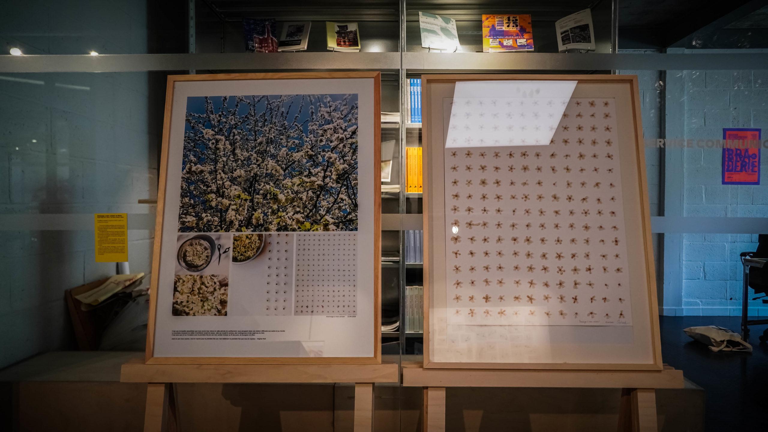 """""""Hommage à mon cerisier en fleurs"""" - Geoffrey Galand - Exposition """"Souvenirs Déconfinés"""" ENSAPL"""